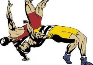 20120211004010-lucha-logo-732-thumb307-.jpg