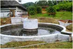 20120228230932-biogas-thumb307-.jpg