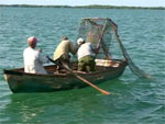 20100224234601-pesca.jpg