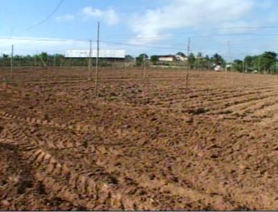 20100913033613-preparacion-de-tierras.jpg