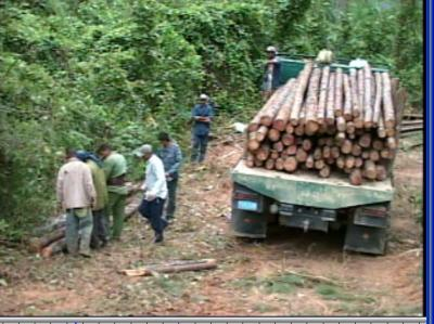 20110926005936-madera.jpg