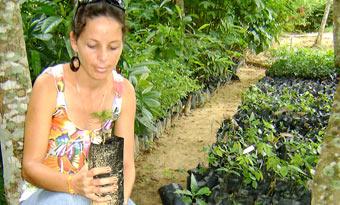 20121012055306-jardin-botanico-pinar-f1.jpg